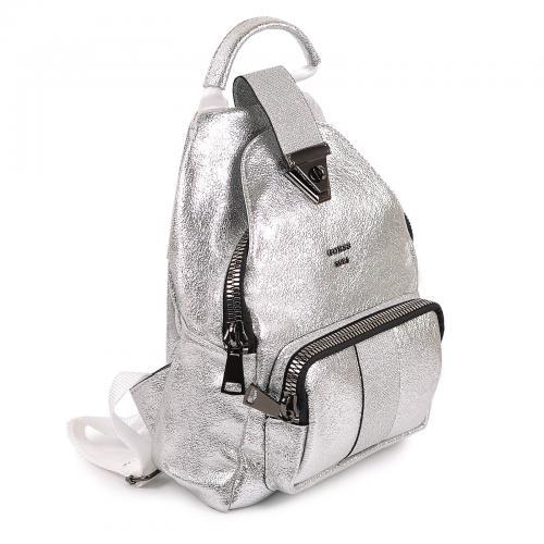 Рюкзак 100 серебро